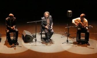 David Lagos presenta 'Made in Jerez' en el festival Flamenco Biennale Países Bajos